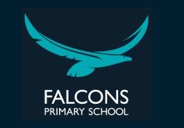 Falcons Primary School