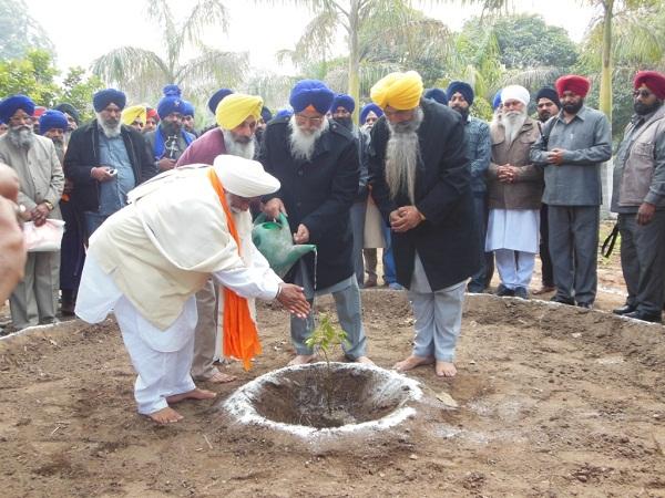 SGPC President Avtar Singh Makkar planting a ceremonial tree at Naulakha Garden (January 31, 2013)