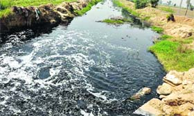 The polluted Kala Sanghian drain in Jalandhar